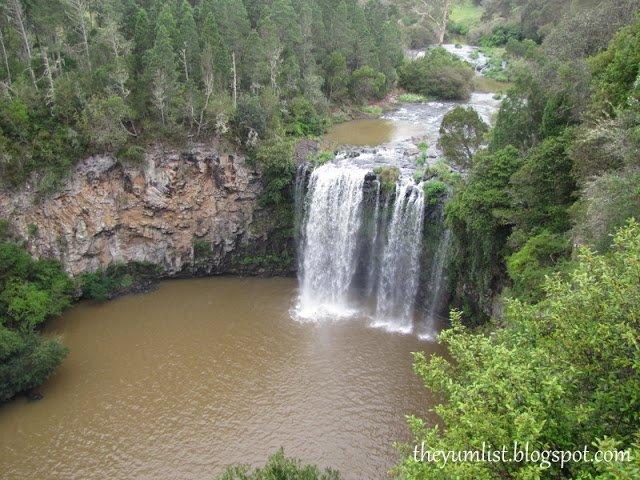 water falls, national park, Dorrigo