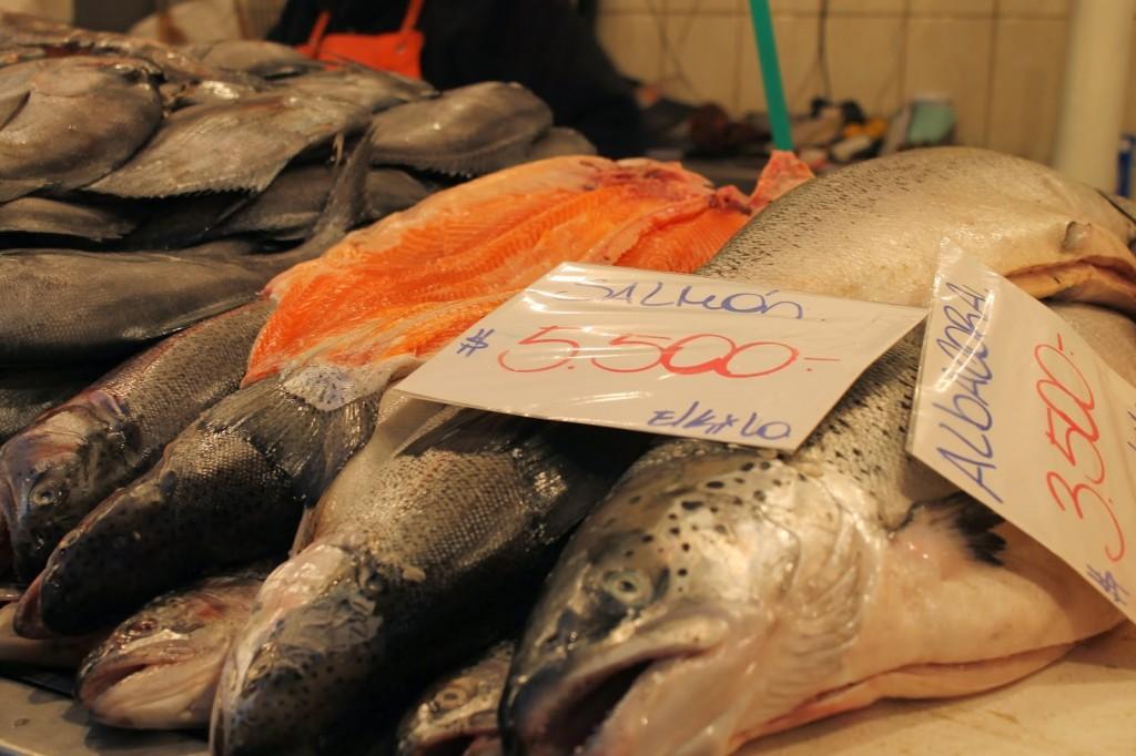 Chile fish