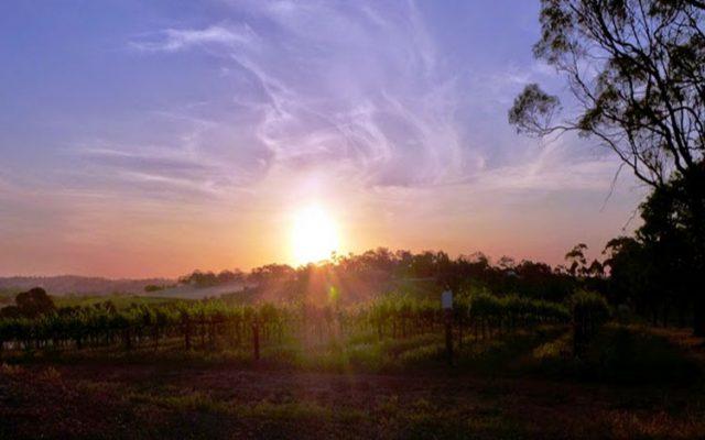 South Australian Tourism