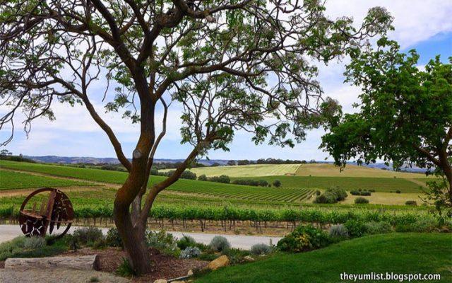 South Australian Wine