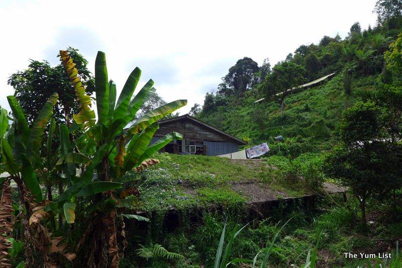 Cameron Highland Resort, YTL, Pahang