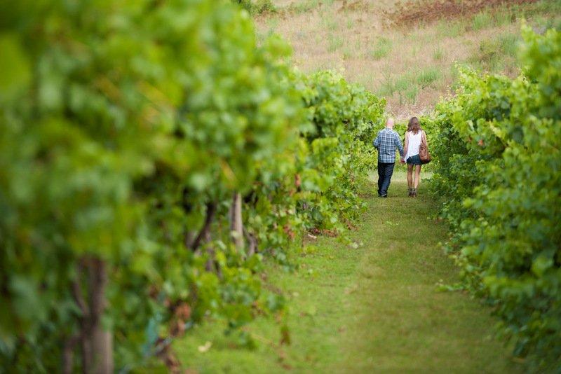 Canberra Pinot Noir