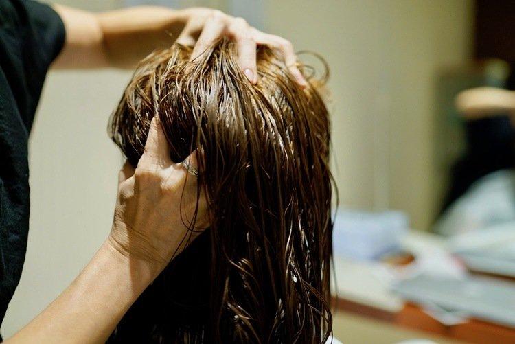 Organic Hair Colour KL