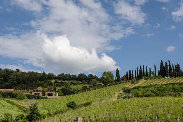Agricola Querciabella Tuscany