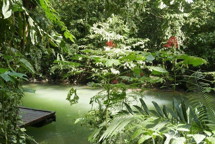 Melinau River