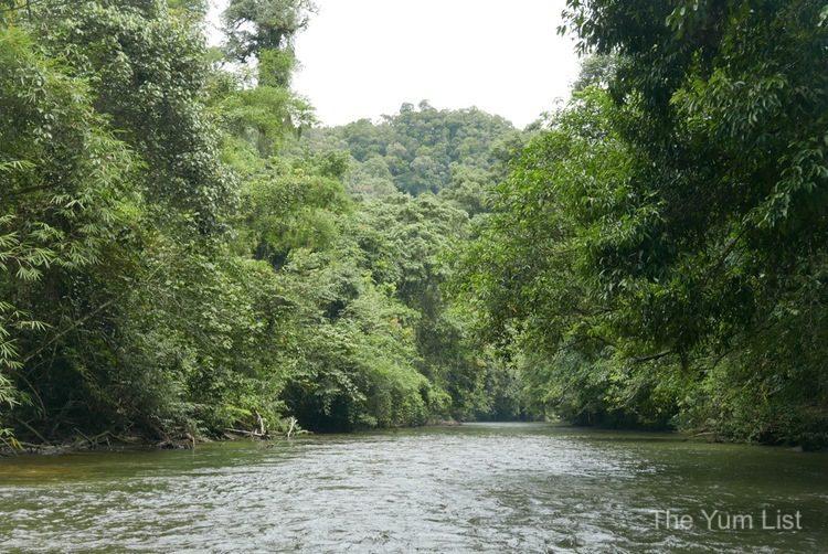 Sarawak Travel Itinerary