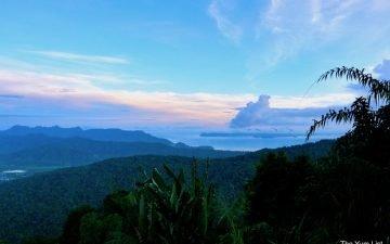 Junglewalla Eco Tours Langkawi