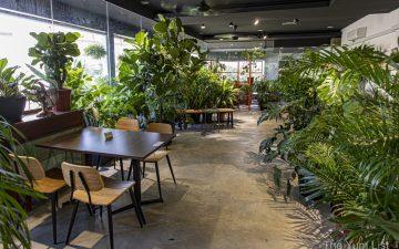 Plant and Pot Studio