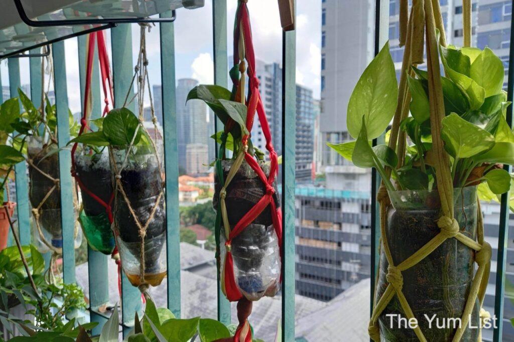 Indoor Gardening Malaysia